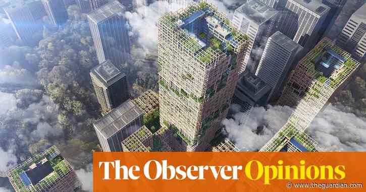 Do you want beautiful, sustainable and safe tall buildings? Use wood | Rowan Moore