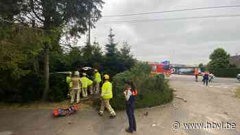 Automobilist rijdt in struikgewas van voortuin in Kortessem (Kortessem) - Het Belang van Limburg