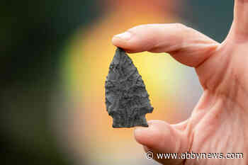 'Like finding a needle in a haystack': Ancient arrowhead discovered near Williams Lake