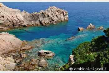 Ispra, il mare della Sardegna per il 99,7% è eccellente - Tiscali.it