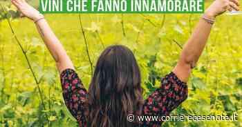 Turismo, Bertinoro punta sul vino / Dall'Italia / Home - Corriere Cesenate