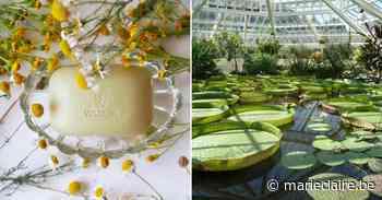 Weleda en plantentuin Meise slaan handen in elkaar - Marie Claire - Marieclaire