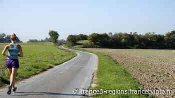 Viol d'une joggeuse à Sully-sur-Loire dans le Loiret - France 3 Régions