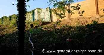 Maßnahmen von Straßen.NRW entlang der A3: Anwohner in Siegburg sind geschockt über Zahl der Baum-Fällungen - General-Anzeiger