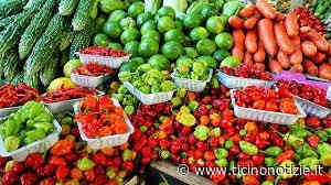 Bareggio, da domani torna il mercato (alimentare). Dal 4 anche a San Martino | Ticino Notizie - Ticino Notizie