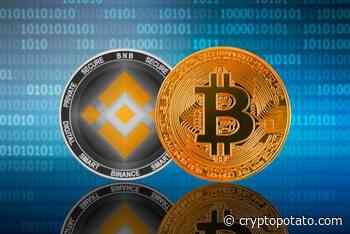 Binance Coin (BNB) Is Unstopable: Becomes The 7th Largest Crypto Following 100% Monthly Gains. This Could Be The Reason - CryptoPotato