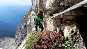 """Trends bei Klettersteigen: """"Familien turnen herum und haben einen Riesenspaß"""" - DER SPIEGEL"""