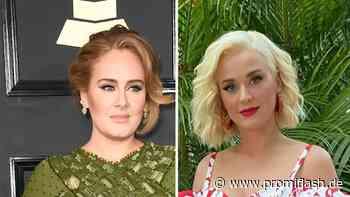 Promi-Gegend: Adele, Katy Perry und Co. sind Nachbarinnen! - Promiflash.de