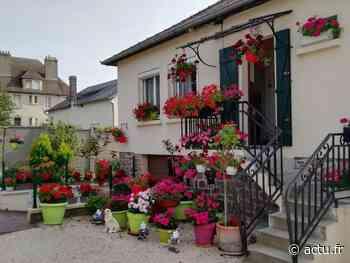 Friville-Escarbotin lance cet été son premier concours des maisons fleuries - actu.fr