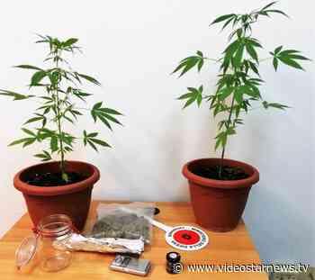 Randazzo: 54enne arrestato per droga | Video Star - Star News