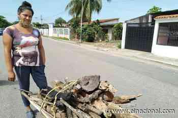 En Guasdualito hacen largas caminatas por leña ante la falta de gas doméstico - El Nacional
