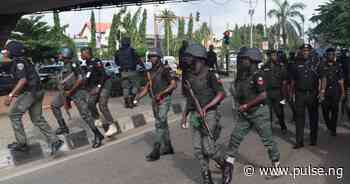 Police rescue mother of Yenagoa LGA Chairman, SPDC workers from kidnappers - Pulse Nigeria