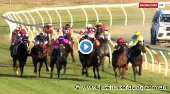 Swan Hill Cup results and replay – 2020 - Just Horse Racing