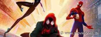 Spider-Gwen & Co.: Hailee Steinfeld weiß nichts von Spin(n)-off - Moviejones.de