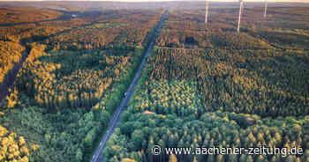 Windkraftanlagen in Roetgen: Kommen Windräder auf den Birkenhahnkopf? - Aachener Zeitung