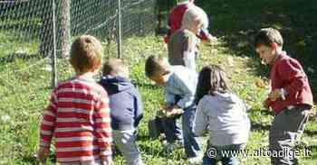 Estate dei bambini al via Calendario pieno di attività - Alto Adige