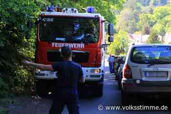 Ilsenburg: Falschparker verstopfen Ilsetal für Retter - Volksstimme