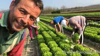 Les bons légumes de saison avec Michel Guillerme producteur à Tullins - France Bleu