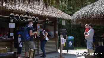 Fase 3, riparte il Parco Natura Viva di Bussolengo - Italia - Agenzia ANSA
