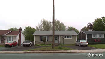 Mount Pearl listens to concerns about power poles - ntv.ca - NTV News
