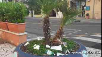 Risse, ubriachi e caos: a Marina di Carrara movida sott'accusa - Il Tirreno
