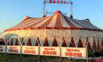 Riparte il Circo Romina Orfei rimasto fermo a San Nicola la Strada per tre mesi | - CasertaWeb