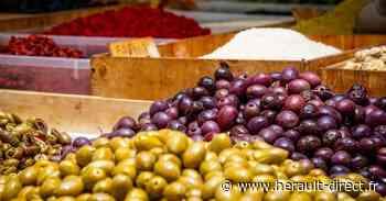 Hérault - Marseillan - Retrouvez votre marché à partir du 9 juin ! - Hérault-Direct