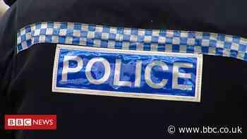Teenage boy charged over Shetland pony death in Broxburn