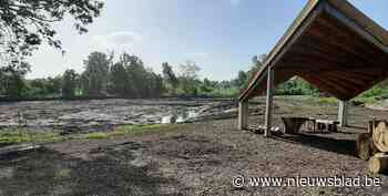 Heraanleg vijver en aanleg speelnatuur zijn volgende stap aan watermolen-site - Het Nieuwsblad