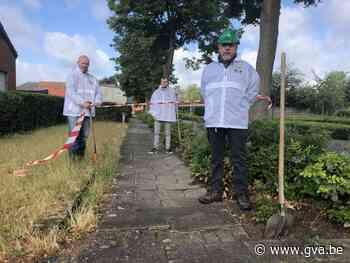 """""""Levensgevaarlijk voetpad voor mensen met een rollator"""" (Olen) - Gazet van Antwerpen"""