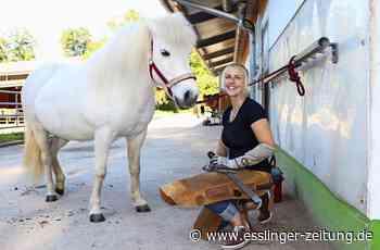 Hufpflegerin aus Deizisau: Pediküre für Pferdefüße - esslinger-zeitung.de