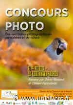 Rencontres de photographies animalières et de nature Saint-Martin-de-Crau 23 septembre 2020 - Unidivers