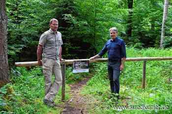 Verbotene Mountainbike-Trails im Wald bei Bodman sind für Mensch und Tier ... | SÜDKURIER Online - SÜDKURIER Online