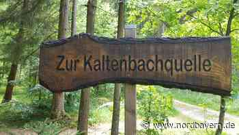 Dillberg: Wie eiskalt ist dies Quellchen - Nordbayern.de