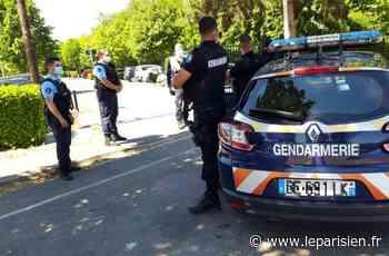À Beaumont-sur-Oise, le lac interdit sous l'œil des gendarmes - Le Parisien