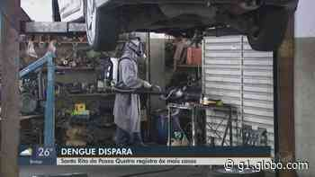 Santa Rita do Passa Quatro tem 570 casos de dengue em 5 meses, número 6 vezes maior que 2019 - G1
