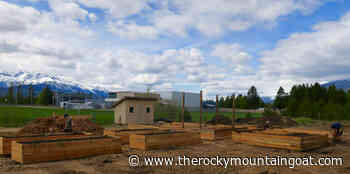 Valemount's new Community Garden - The Rocky Mountain Goat