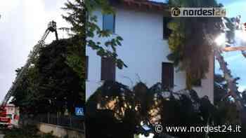 Maltempo a Sacile, Camolli e Brugnera: notte di lavoro per i pompieri - Nordest24.it