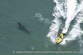 Surfer dies after New South Wales shark attack - Lancaster and Morecambe Citizen