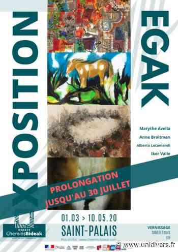 Exposition EGAK Saint-Palais - Unidivers
