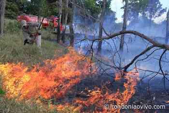 JARU: Fiscalização preventiva contra queimadas ilegais são realizadas - Rondoniaovivo