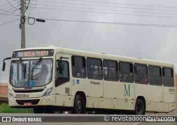 Piraquara: Motorista de ônibus acaba esfaqueado durante assalto - REVISTA DO ÔNIBUS