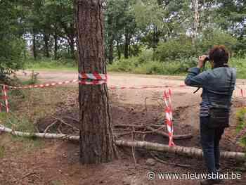 Defensie sluit deel wandelpaden in Uilenbos af met prikkeldraad