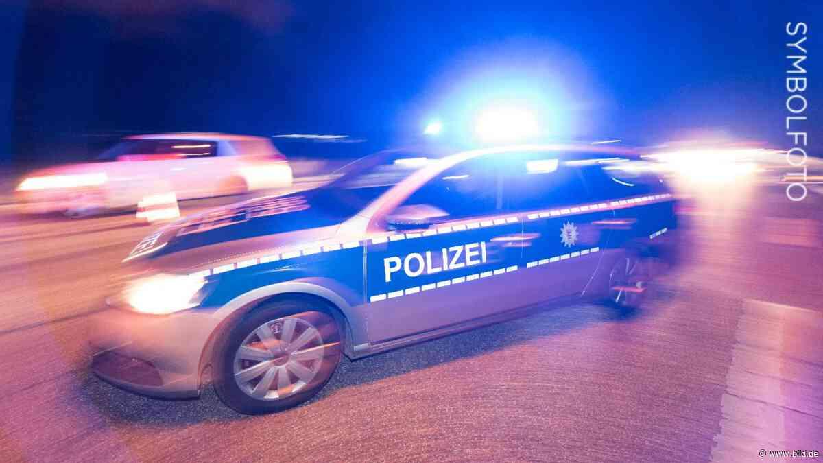 Dillingen: Polizei schnappt flüchtigen Sexualstraftäter (38) - BILD