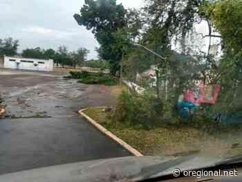 Artur Nogueira sofre estragos com forte temporal na madrugada de domingo; ventos atingem 130 Km/h - O Regional