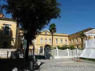 Riaprono le biblioteche di Carrara, Avenza e Marina - La Voce Apuana
