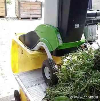 Politie ript 2.000 wietplanten op boerderij Oldemarkt - CNNBS