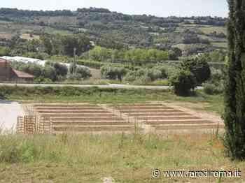Orti in affitto come green therapy, iniziativa ad Altidona con 14 porzioni di terreno da coltivare - FarodiRoma - Farodiroma