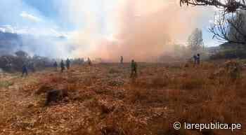 Cajamarca: serenos y comuneros apagan incendio forestal en Cajabamba - LaRepública.pe