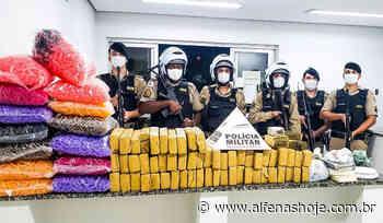 PM apreende drogas e prende dois suspeitos - Alfenas Hoje
